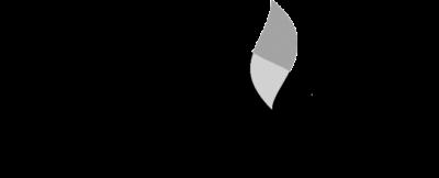 Logo Paul Schiller Stiftung bw
